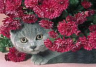 """Алмазная живопись. Набор алмазной вышивки """"Котенок в цветах"""". Размер 40*30 см."""