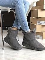 Женская зимняя обувь серого цвета УГГи с бантом. Комфортные угги для девушек MINI BAILEY BOW II GREY замшевые.