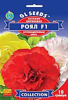 Семена Бегонии Рояль F1 смесь (10шт), Collection, TM GL Seeds