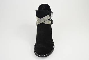 Ботинки замшевые с ремешками Kluchini 13081, фото 3
