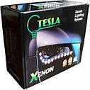 Ксеноновая лампа Tesla Inspire H3 4300K 40W (P17696), фото 3