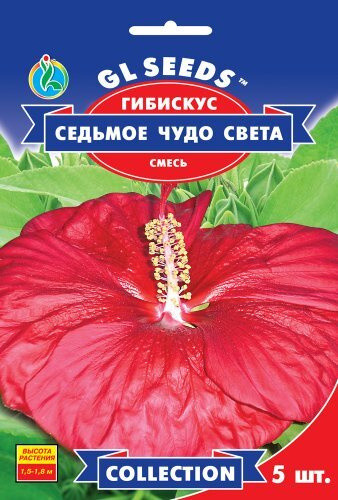 Семена Гибискуса Семь чудес света (5шт), Collection, TM GL Seeds