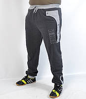 Мужские спортивные штаны под манжет - утепленные  - (код 41-157)