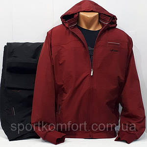 Утеплений спортивний костюм плащова тканина FORE Туреччина тепла підкладка брюки прямі знімний капюшон бордо