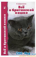 Все о британской кошке. Шевченко
