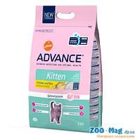Корм ЭДВАНС (Advance) для котят 15кг