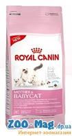 Royal Canin Babycat (роял канин сухой корм для котят от 1 до 4мес. и лактирующих кормящих кошек) 0,4 кг
