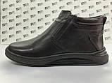 Комфортні шкіряні демісезонні черевики на блискавці Detta, фото 6