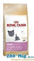 Royal Canin Kitten British Shorthair (сухой корм роял канин для котят британской короткошерстной от 4-12мес) 0,4кг