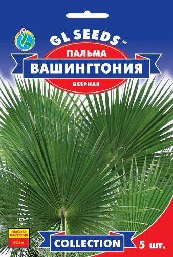Семена Пальмы веерной Вашингтония робуста (5шт), Collection, TM GL Seeds