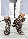 Ботильоны кожаные леопард 7534-28, фото 2