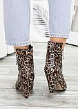 Ботильоны кожаные леопард 7534-28, фото 5