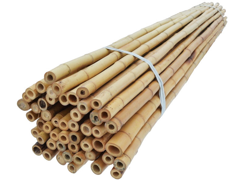 Бамбукова опора 2,4 м, діаметр 20-22 мм