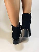 Женские осенние ботинки. На среднем каблуке. Натуральный замш. Высокое качество Blue Tempt. Р. 35-39.Vellena, фото 7