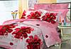 Евро комплект постельного белья 200*220 ЭКОНОМ (6268) Бязь хлопок_полиэстер