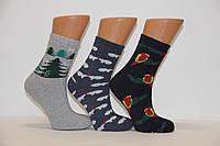 Жіночі шкарпетки махрові тэрмо JNLEP jle K1