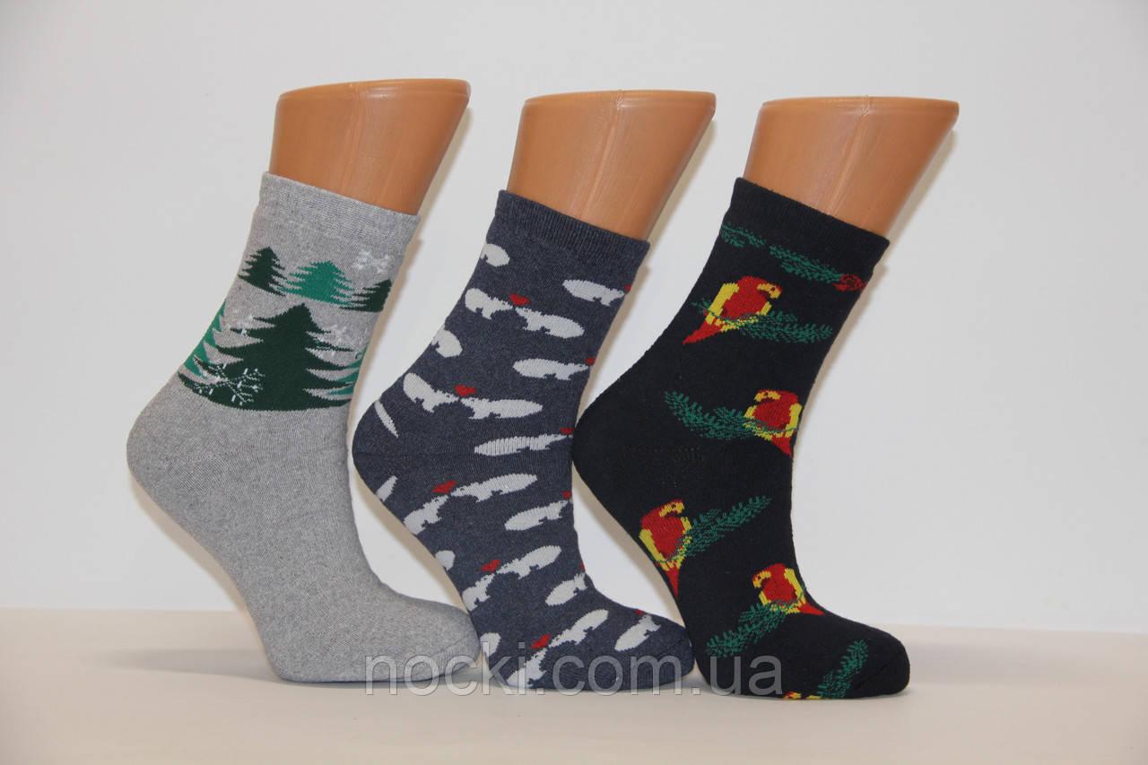 Женские носки махровые тэрмо JNLEP   jle K1