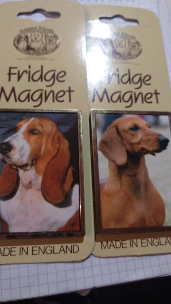 Магніт на холодильник сувенір собака пес такса або бігль Британія