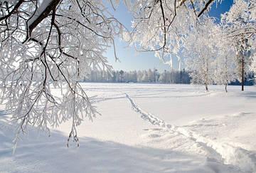 Холодная зима=Теплая одежда