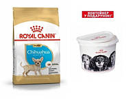 Акція! + Контейнер у подарунок! Корм для собак Royal Canin Chihuahua Junior (Роял Канин Чихуахуа юниор) 1,5 кг