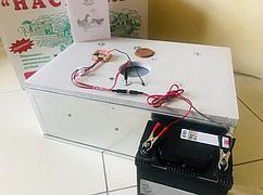 Инкубатор бытовой Наседка, на 54 яиц, механический, цифровой, Усиленный оцинкованный корпус