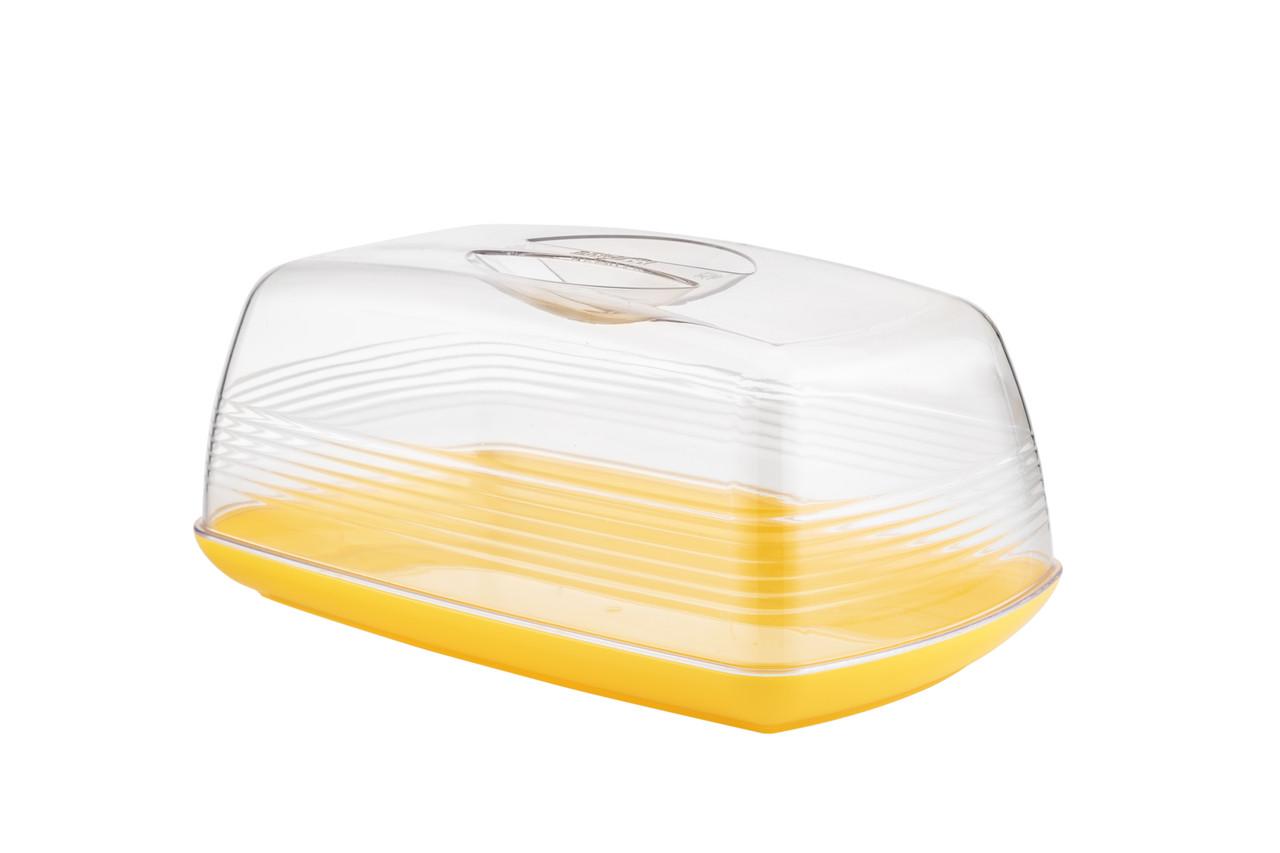 Контейнер для хранения сыра Berossi Cake медовый