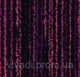Coral вхідні система-colour purple