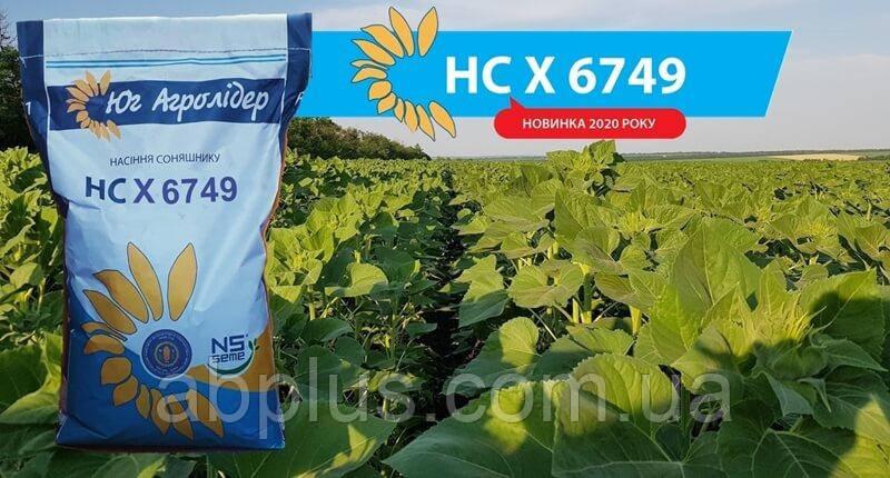 Семена подсолнечника НС Х 6749  A-G Екстра