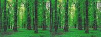 """3Д светящиеся обои """"Лесной парк-2"""" 135/180см./рулон"""