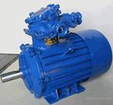 Электродвигатель АИММ100S4, (3 кВт, 1500 об/мин) взрывозащищённый