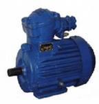 Электродвигатель АИММ100L4, (4 кВт, 1500 об/мин) взрывозащищённый