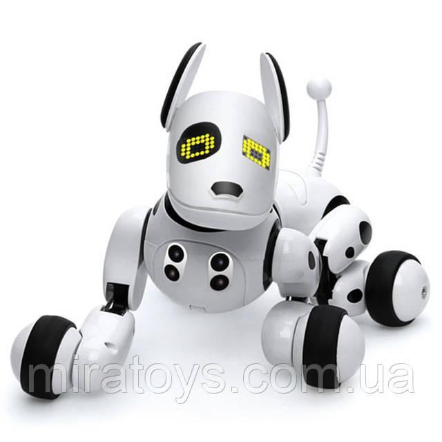 Робот-собака 9007A на радіоуправлінні