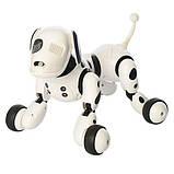Робот-собака 9007A на радіоуправлінні. Танцює, виконує команди., фото 4