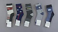 Шкарпетки утеплені для хлопчиків Aura.via, 32/35 pp. Артикул: GFV3235