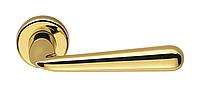 Дверная ручка Colombo Design Robodue CD 51 полированная латунь 50мм розетта