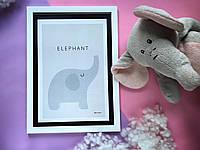 """Постер """"Elephant"""", фото 1"""