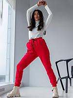 Теплі спортивні штани з трехнитки з начосом червоний