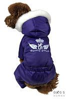 Зимний комбинезон для собак Dogs Bomba AM-4 на меху (фиолет)