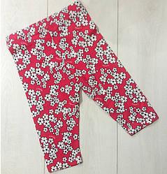 Капри для девочки красные,  рисунок Ромашки, Lovetti  (размер 1(86))
