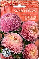 Астра китайская Хризантелла Фламинго на закате 30 шт (Биотехника)