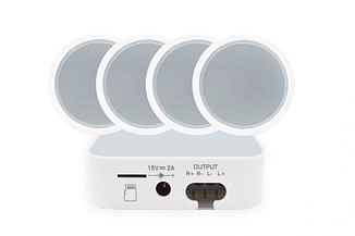 Акустический комплект SKY SOUND WIFI BOX-1030
