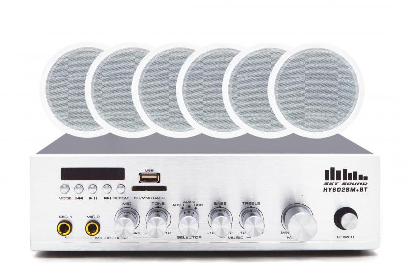 Акустический комплект SKY SOUND CSY-3106
