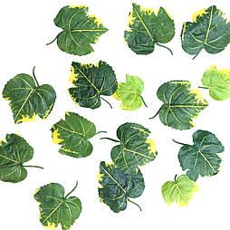 Листя калини зелені (50 шт. в уп.)