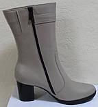Полусапожки женские кожаные демисезонные на каблуке от производителя модель КС0187Р, фото 3