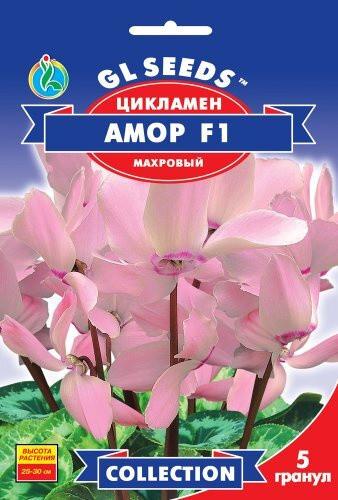 Семена Цикламена F1 Амор (5шт), Collection, TM GL Seeds