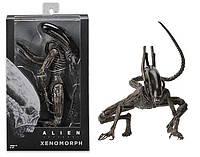 Игровая Коллекционная Фигурка Чужой Ксеноморф с подвижными частями тела, высота 17 см - Alien Xenomorph Neca