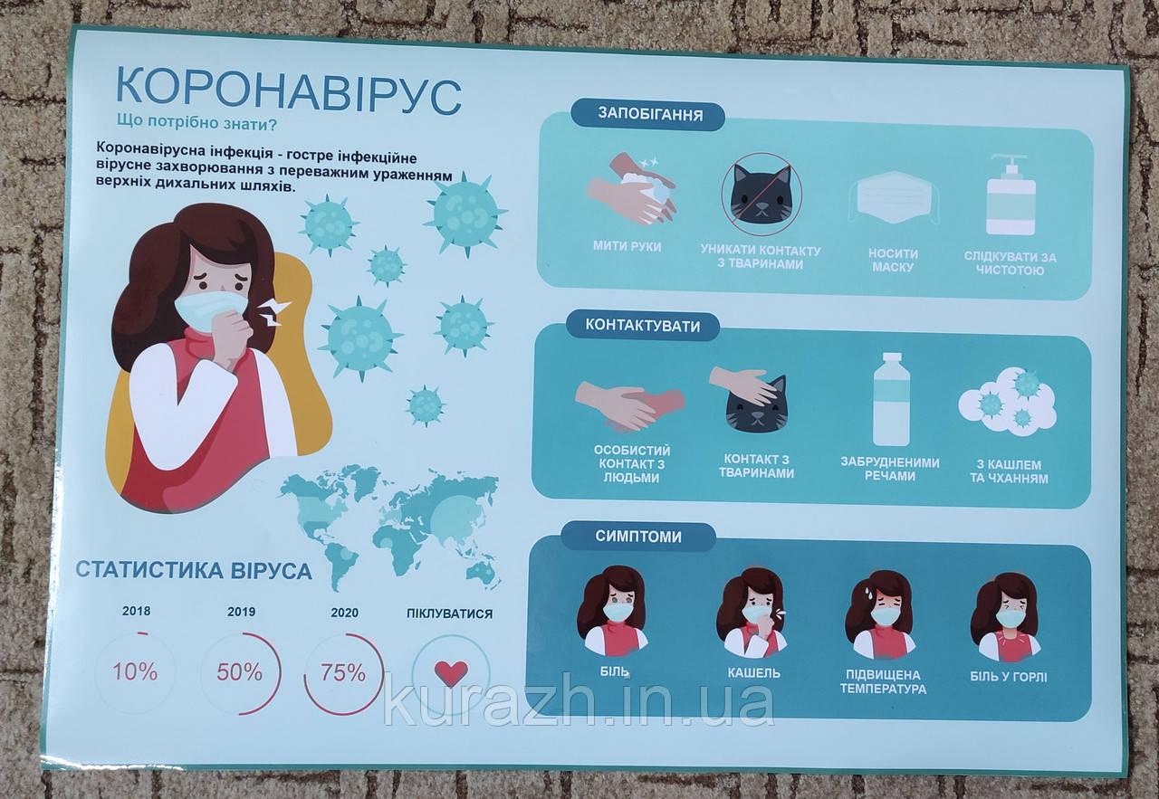 Наклейка  «Коронавірус, що потрібно знати»