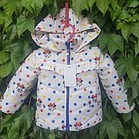 """Демисезонная курточка для маленьких девочек """"Льоля"""" принт молочный Микки-маус 98"""