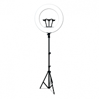 Кольцевая LED лампа RL-21 55 Вт, 54 см, со штативом