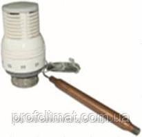 Термоголовка с выносным погружным датчиком FADO